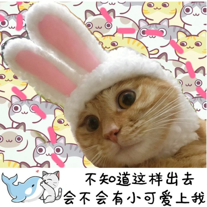 Lustige Haustier Hund Katze Kappe Kostüm Warme Kaninchen Hut Neue Jahr Party Weihnachten Cosplay Zubehör Foto Requisiten Headwear 3