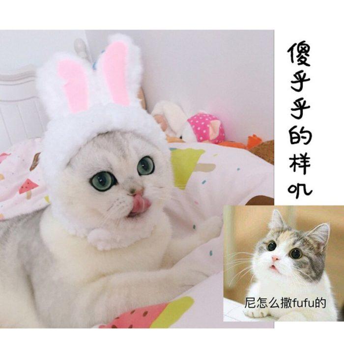 Lustige Haustier Hund Katze Kappe Kostüm Warme Kaninchen Hut Neue Jahr Party Weihnachten Cosplay Zubehör Foto Requisiten Headwear 2
