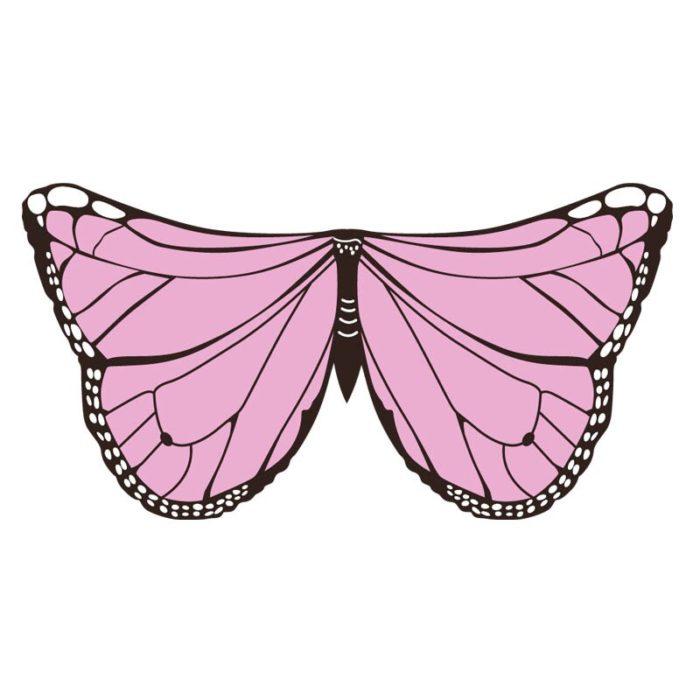 Drachen Kostüme Schmetterling Flügel Vogel Cosplay Ara Elster Inspiriert Flügel Kinder Kostüm Blau Rot 4