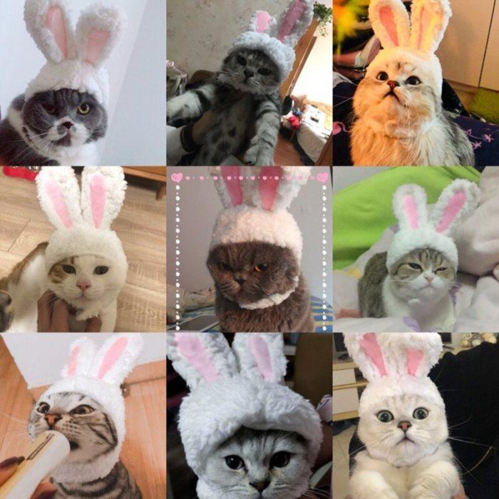 Lustige Haustier Hund Katze Kappe Kostüm Warme Kaninchen Hut Neue Jahr Party Weihnachten Cosplay Zubehör Foto Requisiten Headwear 5