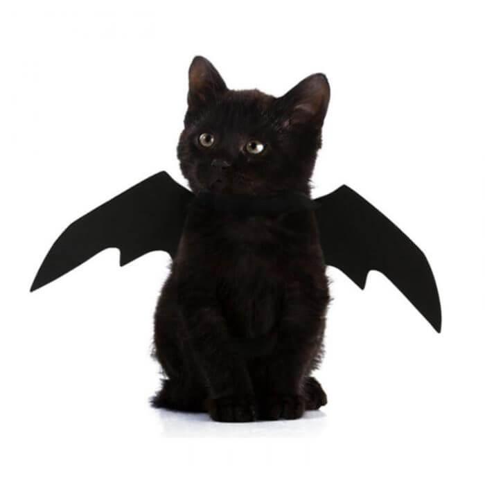 2019 neue OLN Pet Hund Katze Fledermaus Flügel Cosplay Prop Halloween Bat Phantasie Kleid Kostüm Outfit Flügel Katze Kostüme Foto requisiten Headwear 1