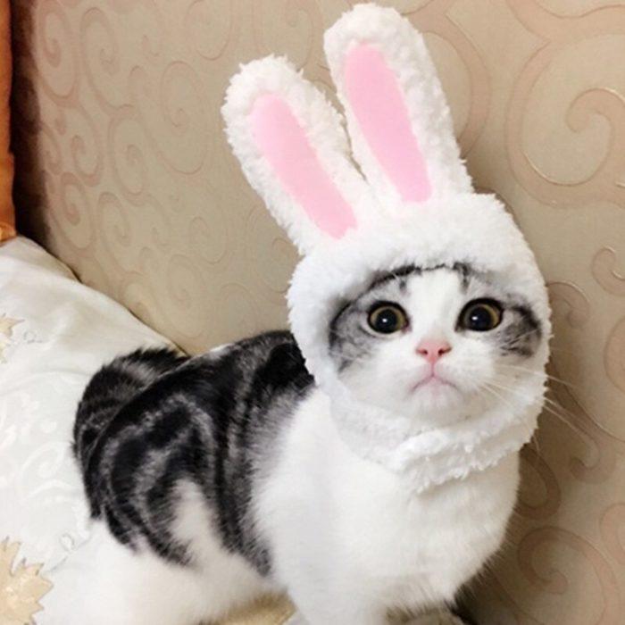 Lustige Haustier Hund Katze Kappe Kostüm Warme Kaninchen Hut Neue Jahr Party Weihnachten Cosplay Zubehör Foto Requisiten Headwear 6