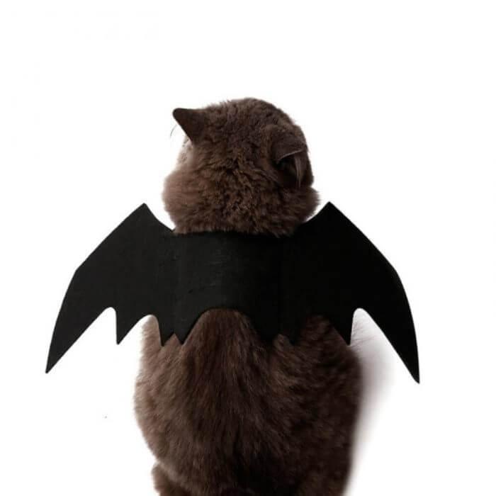 2019 neue OLN Pet Hund Katze Fledermaus Flügel Cosplay Prop Halloween Bat Phantasie Kleid Kostüm Outfit Flügel Katze Kostüme Foto requisiten Headwear 2