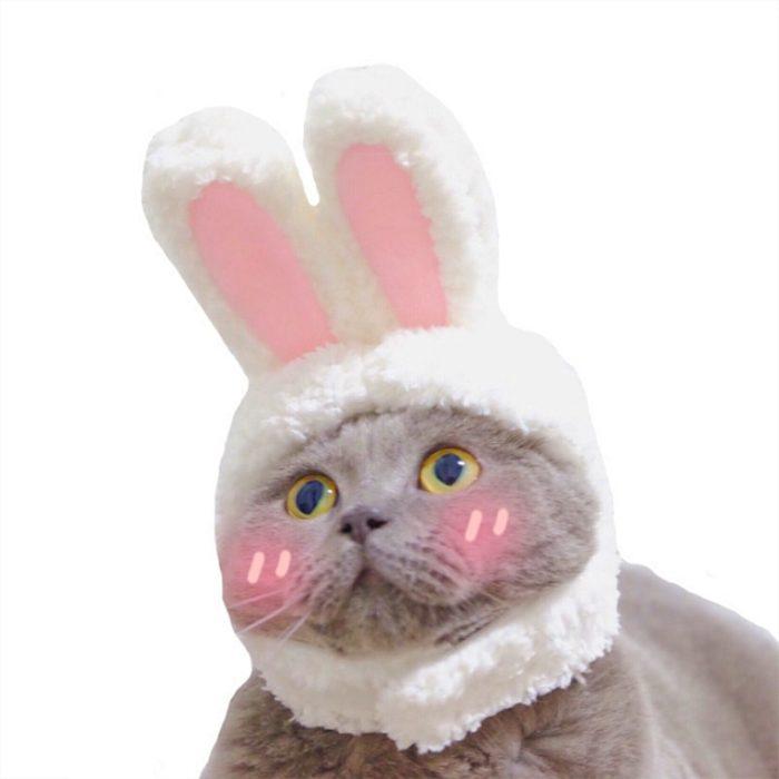 Lustige Haustier Hund Katze Kappe Kostüm Warme Kaninchen Hut Neue Jahr Party Weihnachten Cosplay Zubehör Foto Requisiten Headwear 1